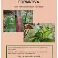 XORNADA FORMATIVA