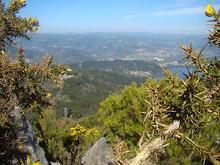 Vistas de Castrelo desde Coto Novelle